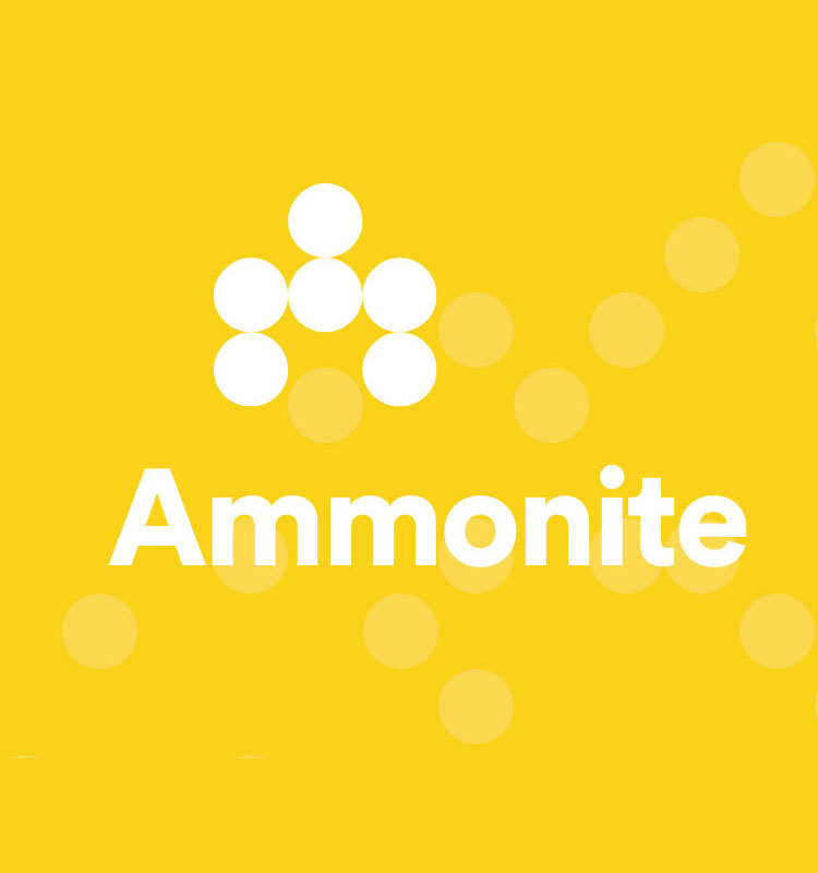 https://sixtwo.tech/wp-content/uploads/2019/12/casestudy-ammonite_feature-2.jpg