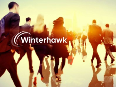 https://sixtwo.tech/wp-content/uploads/2020/01/casestudy-winterhawk_feature-1.jpg